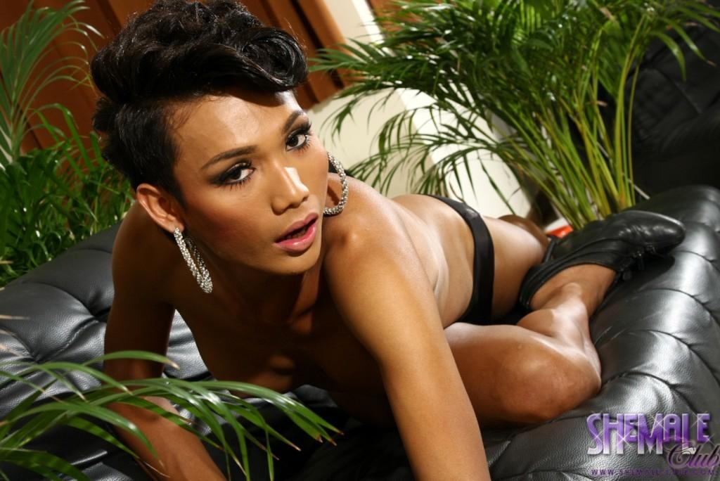Arousing T-Girl Sonya Posing Her Massive Stiff Tool