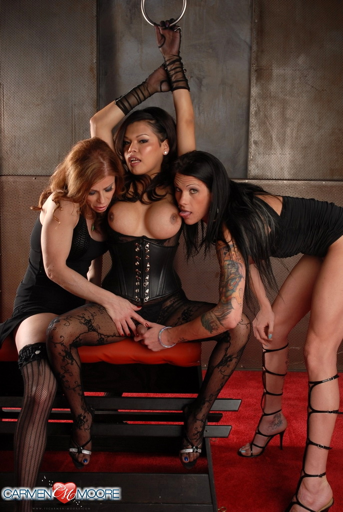 Nasty Carmen Having Oral In A Spicy TS Three Way